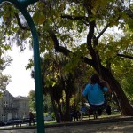 MA swinging in a park in Old Town Sonoma.